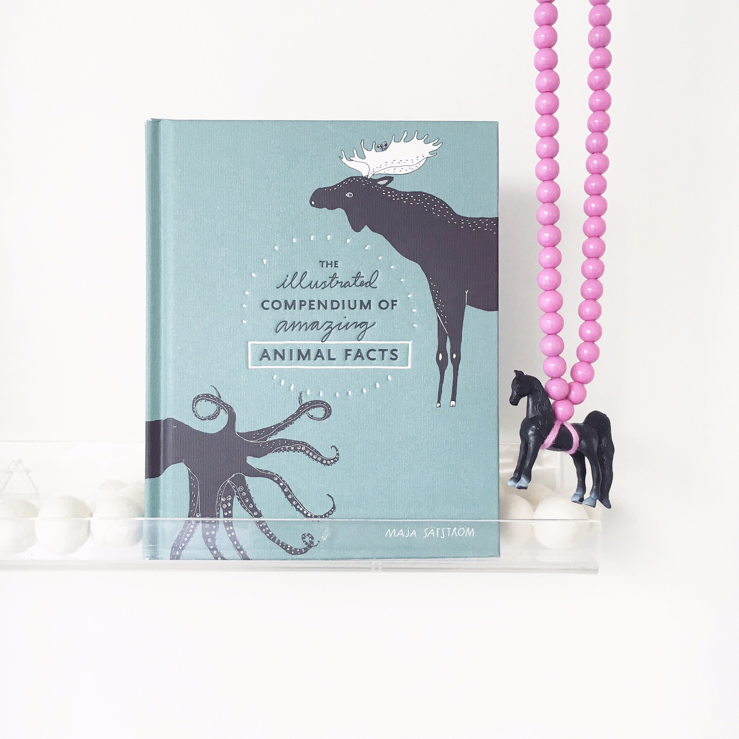 Book by Maja Safstrom. Purchased through The Little Vikings. Necklace also The Little Vikings.
