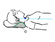 section C for your neck area