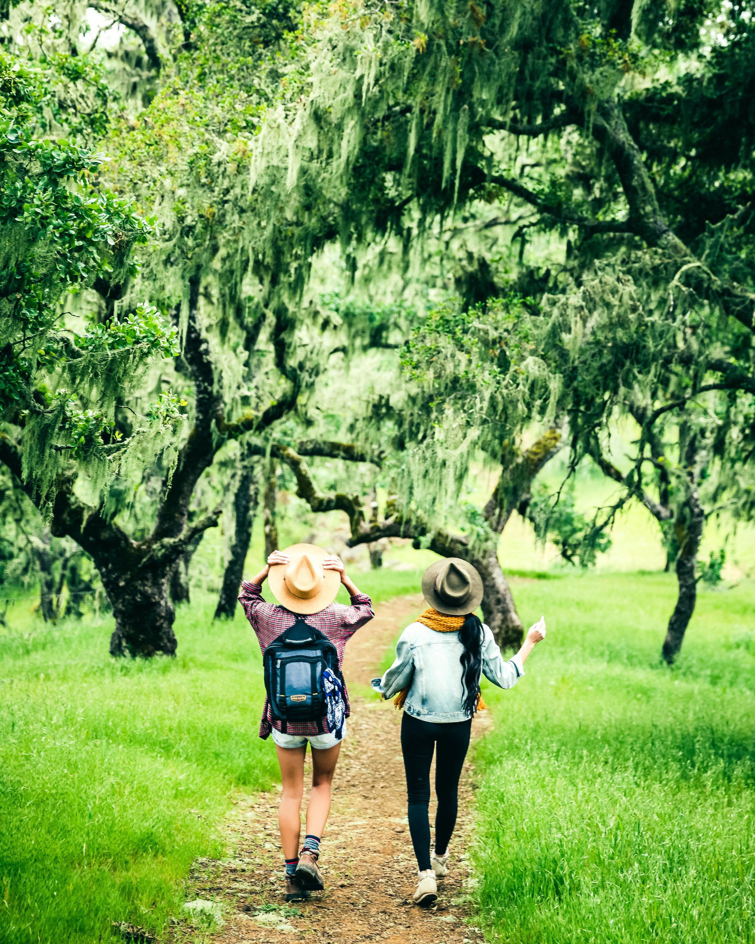 Hiking_4.jpg