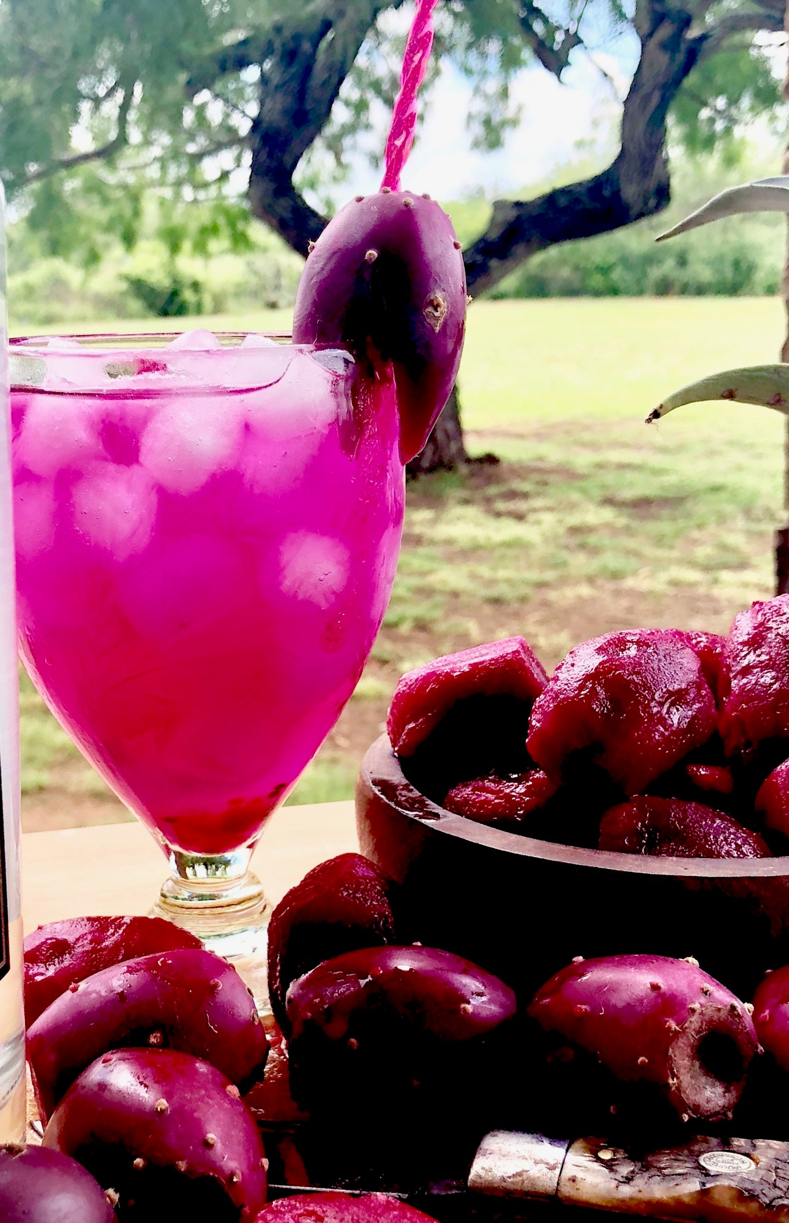 WRV TEXAS PRICKLY:  2 ounces of one mini bottle of Wild Rag Mesquite Bean Vodka  2 ounces of Crushed/drained Prickly Pear 2 ounces sparkling water of your choice  Pour all ingredients into a rocks glass filled with ice and garnish with Prickly Pear.