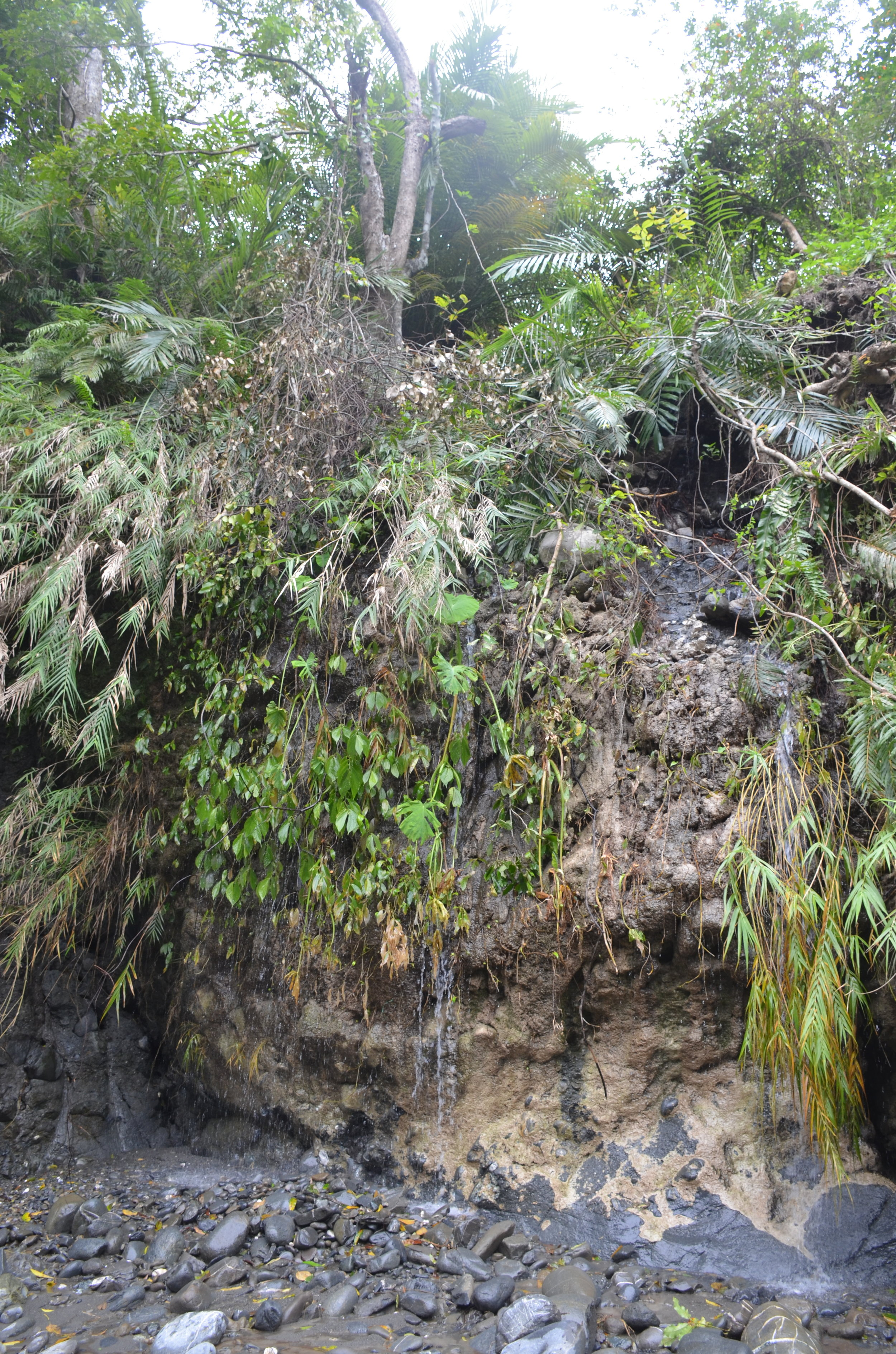 這裡以前是個小瀑布,現在變成飯店前的瀑布造景了