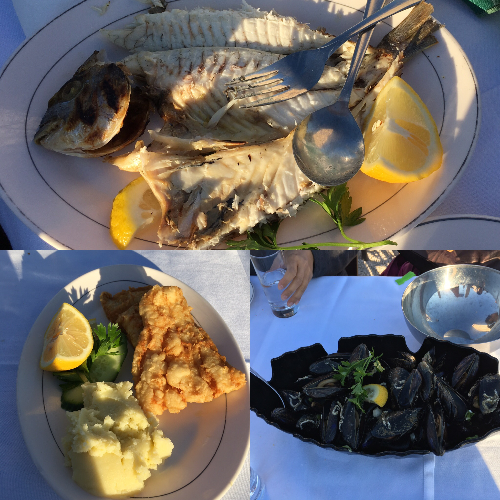 Fresh grilled fish (tasty), fried cod (ehh was too salty and dry for me), and fresh mussels (meaty and good)