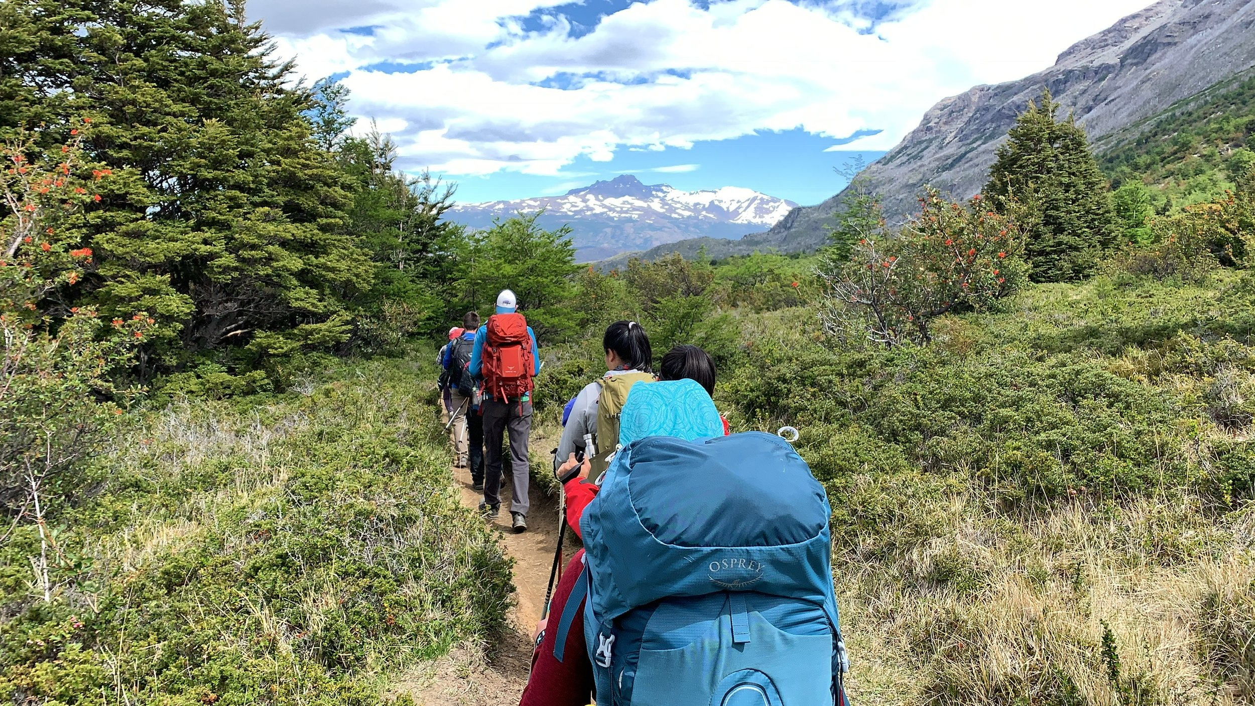 Typical trail in Torres del Paine