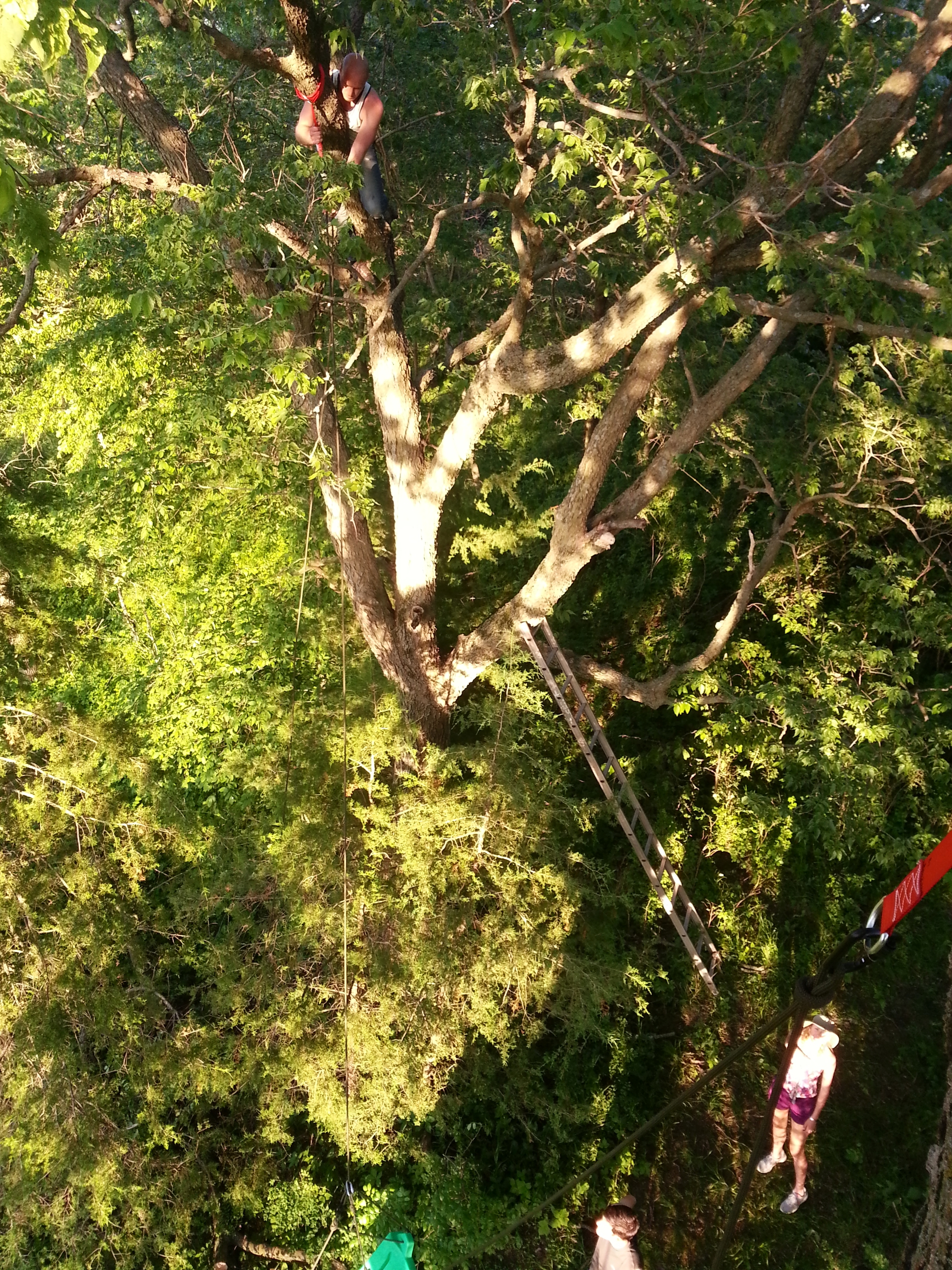 Hanging a swing means getting real high...