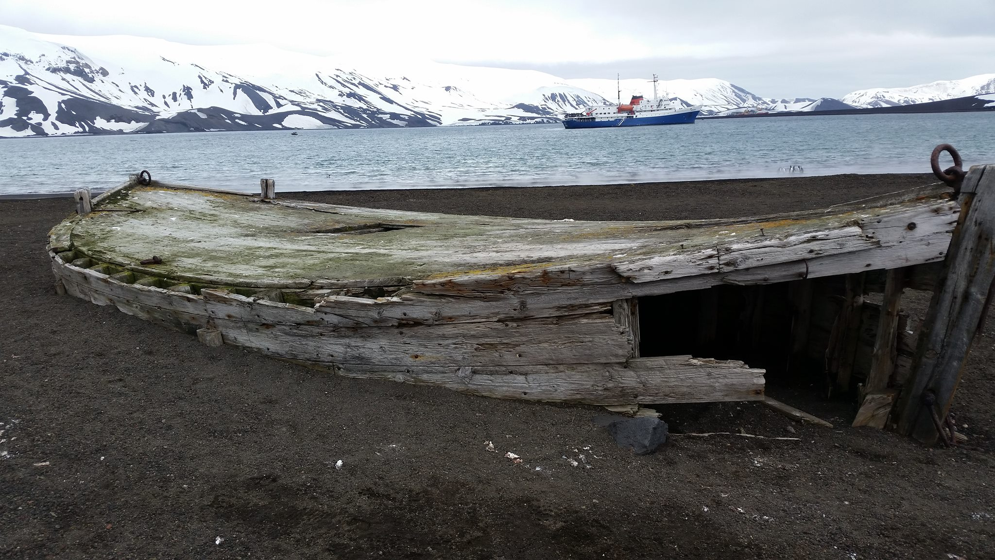Taken on Deception Island, which is also known as the whales graveyard. This island is really interesting because it has an active underwater volcano.
