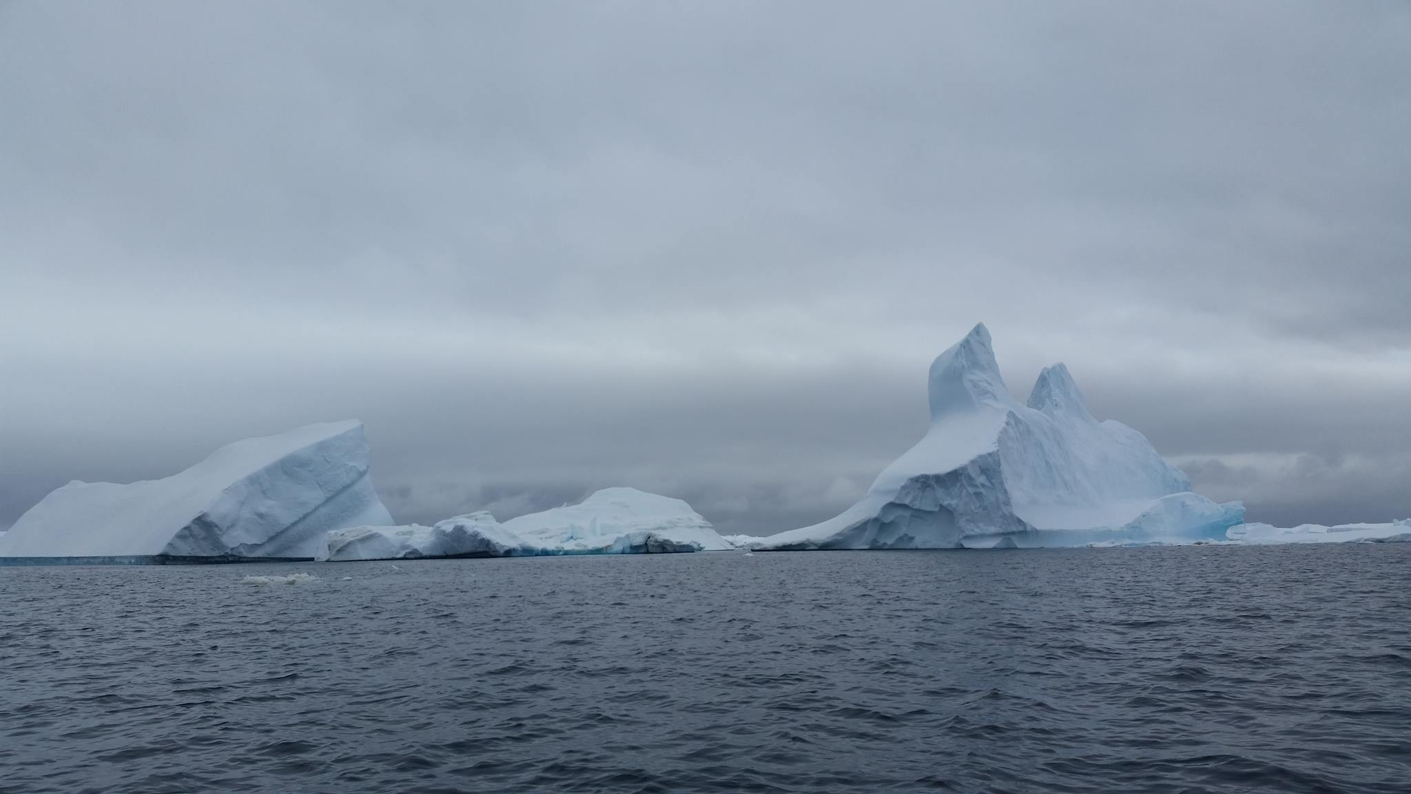 Iceberg graveyard.