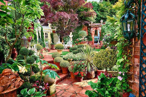 Image courtesy of the Mail's National Garden Competition Britain 2016 Nottingham Garden winners Malcolm Bescoby and Michael Blood.