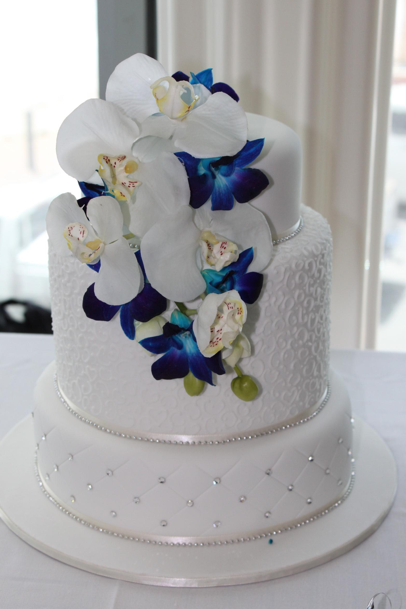 Cake Feature 4.jpg