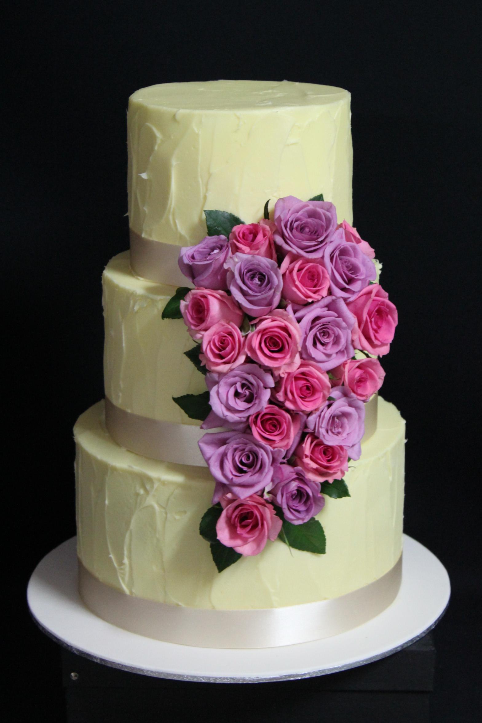 Cake Feature 5.jpg