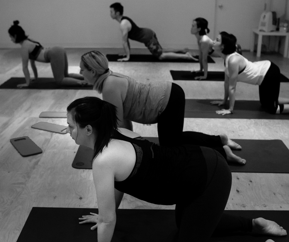 Development Workshops - These four week sessions are for those that have never tried yoga before and for those who would like to deepen the knowledge of their yoga practice.