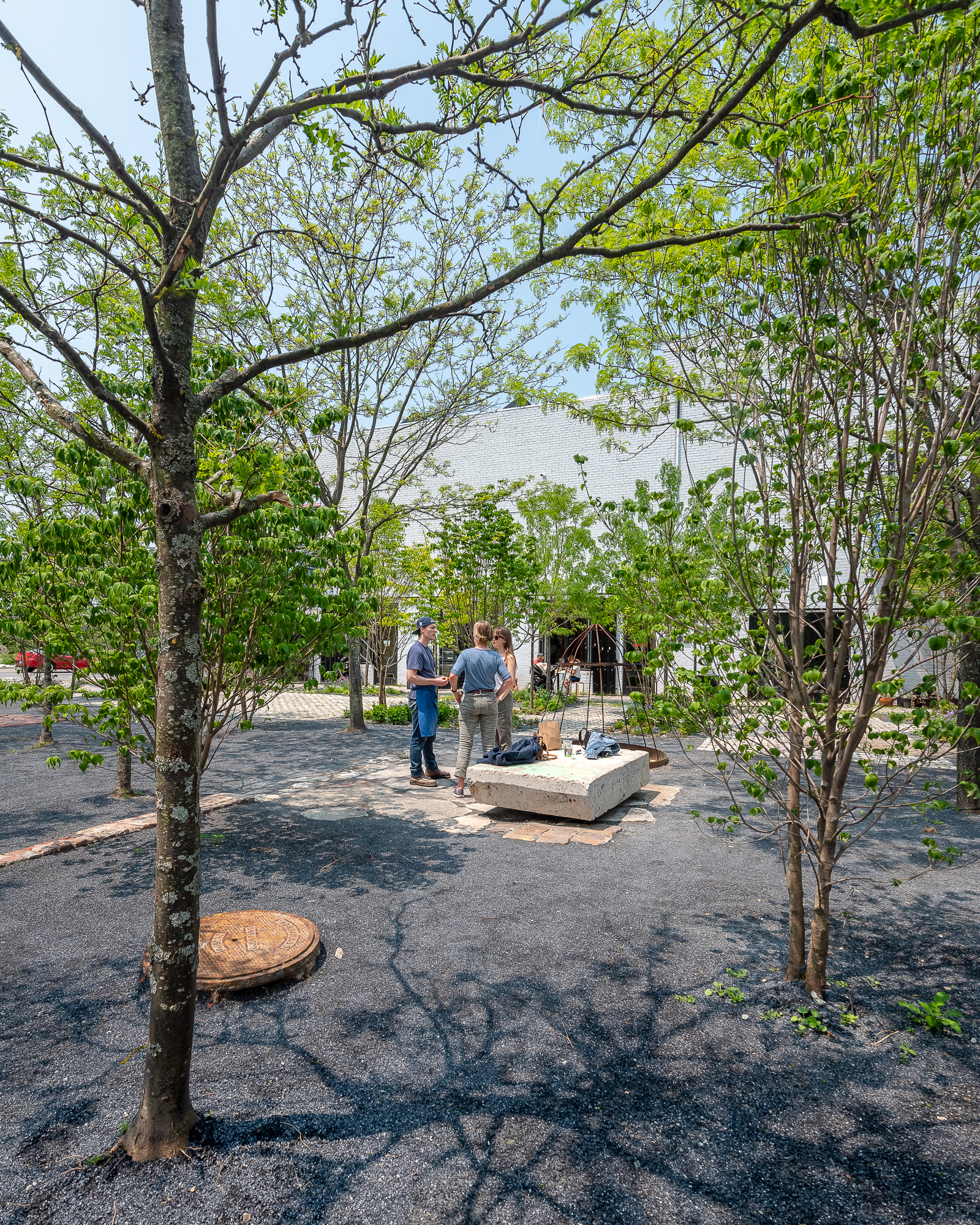 prince_concepts_core_city_park_spring-11.jpg