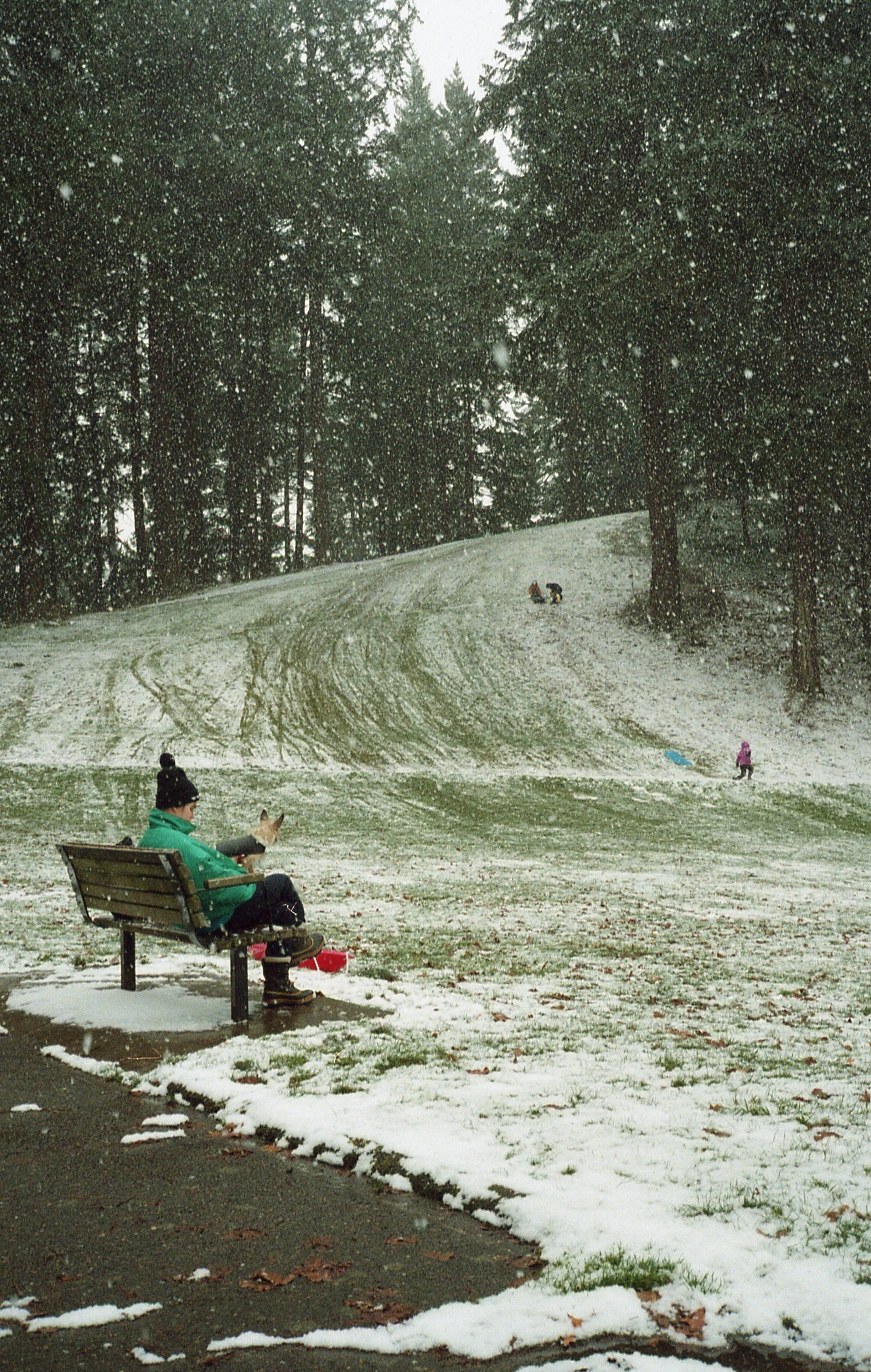 Snow Tabor bench verticle.jpg