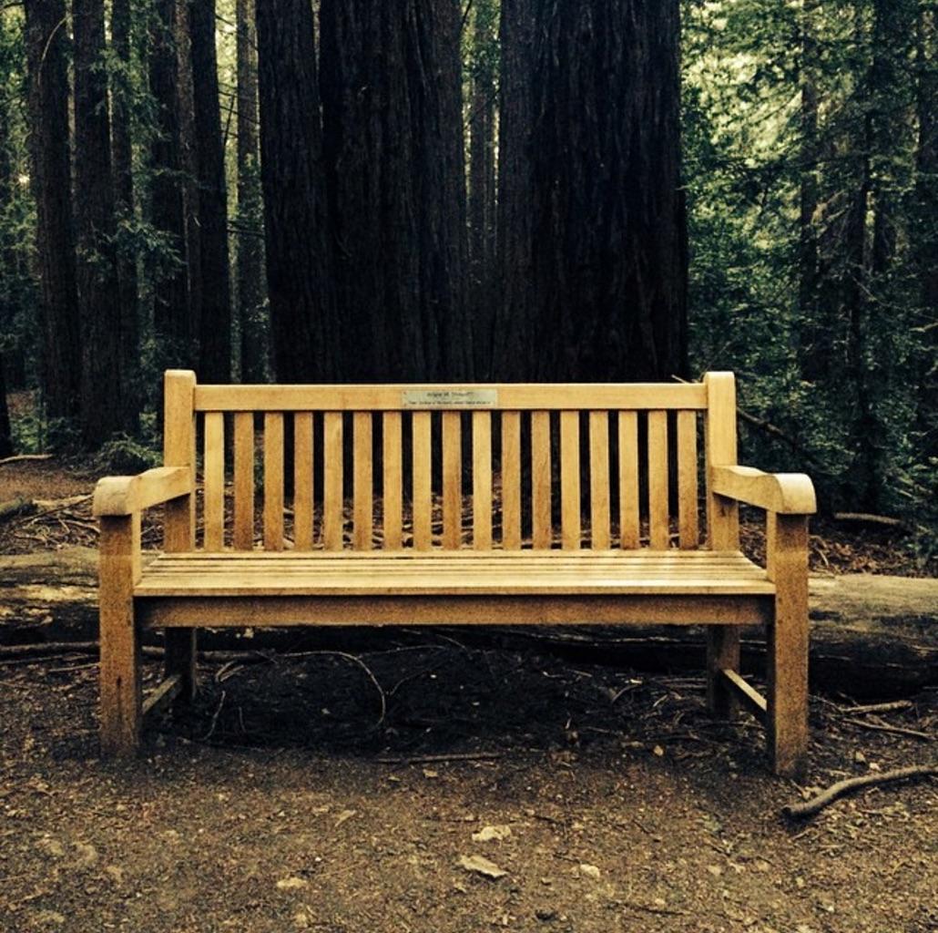 rewood bench.jpg