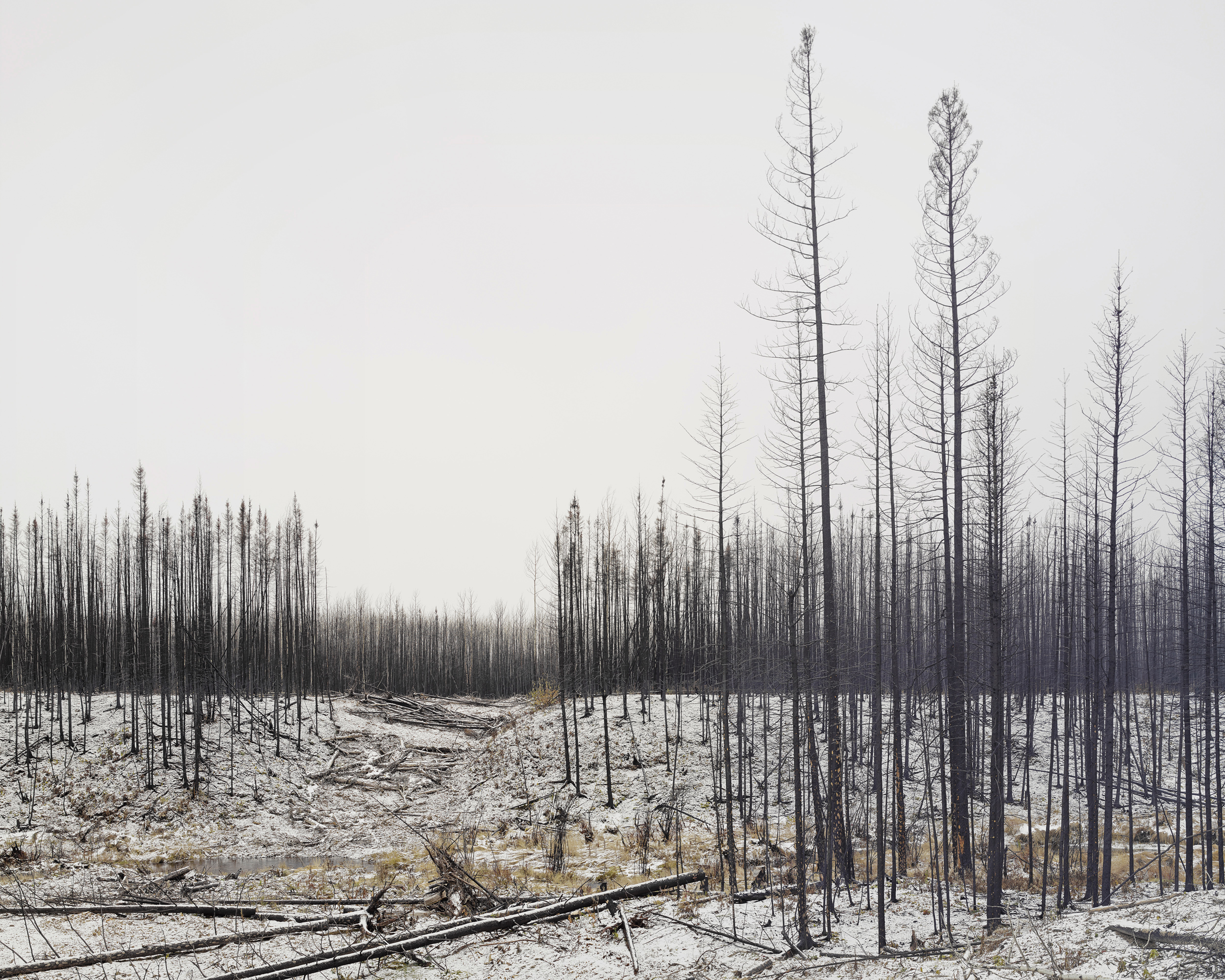 Emergency Fire Break, Fort McMurray, Canada. November 2016