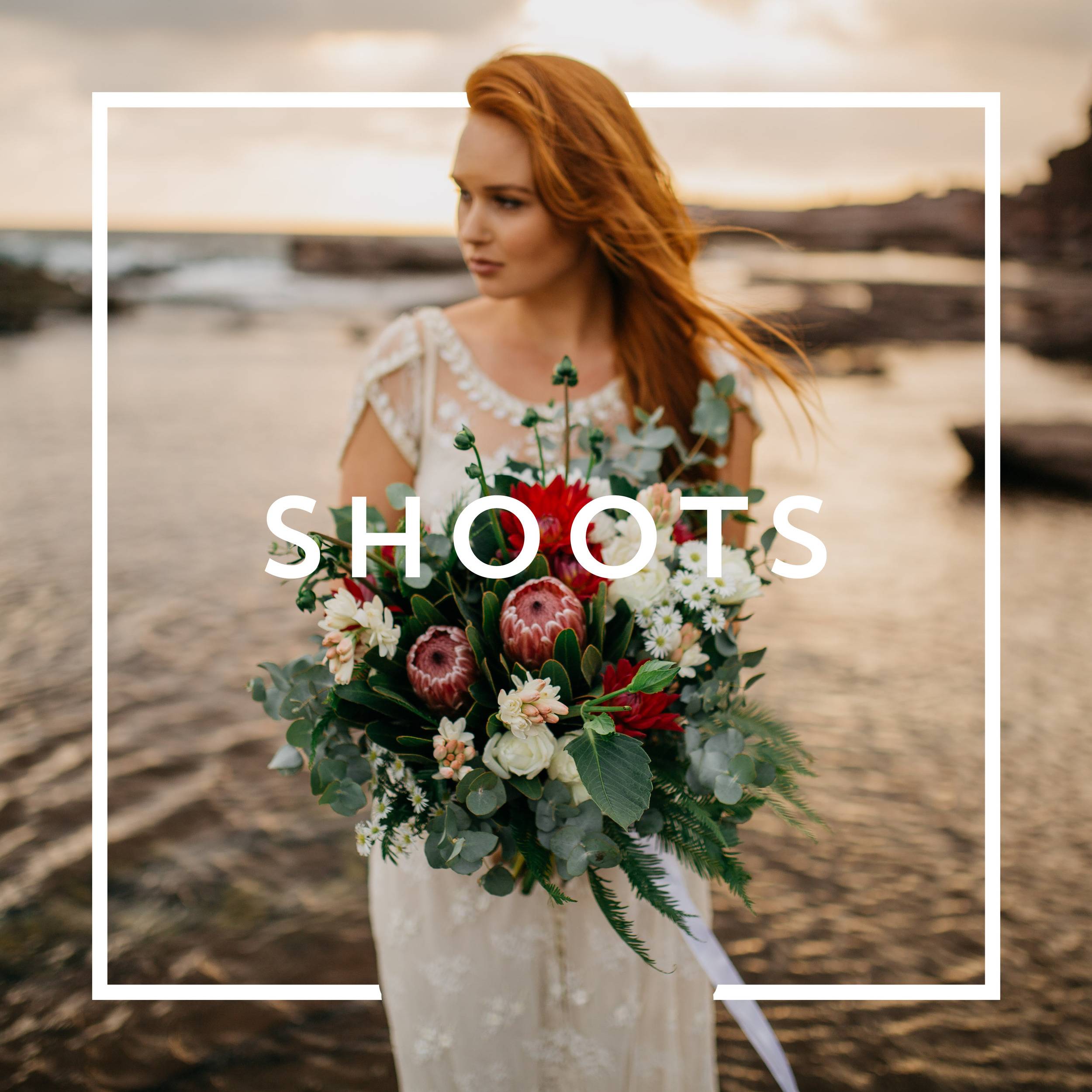 Copy of SHOOTS