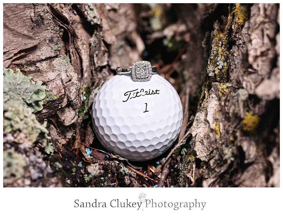 Sandra Clukey Photography_0950.jpg