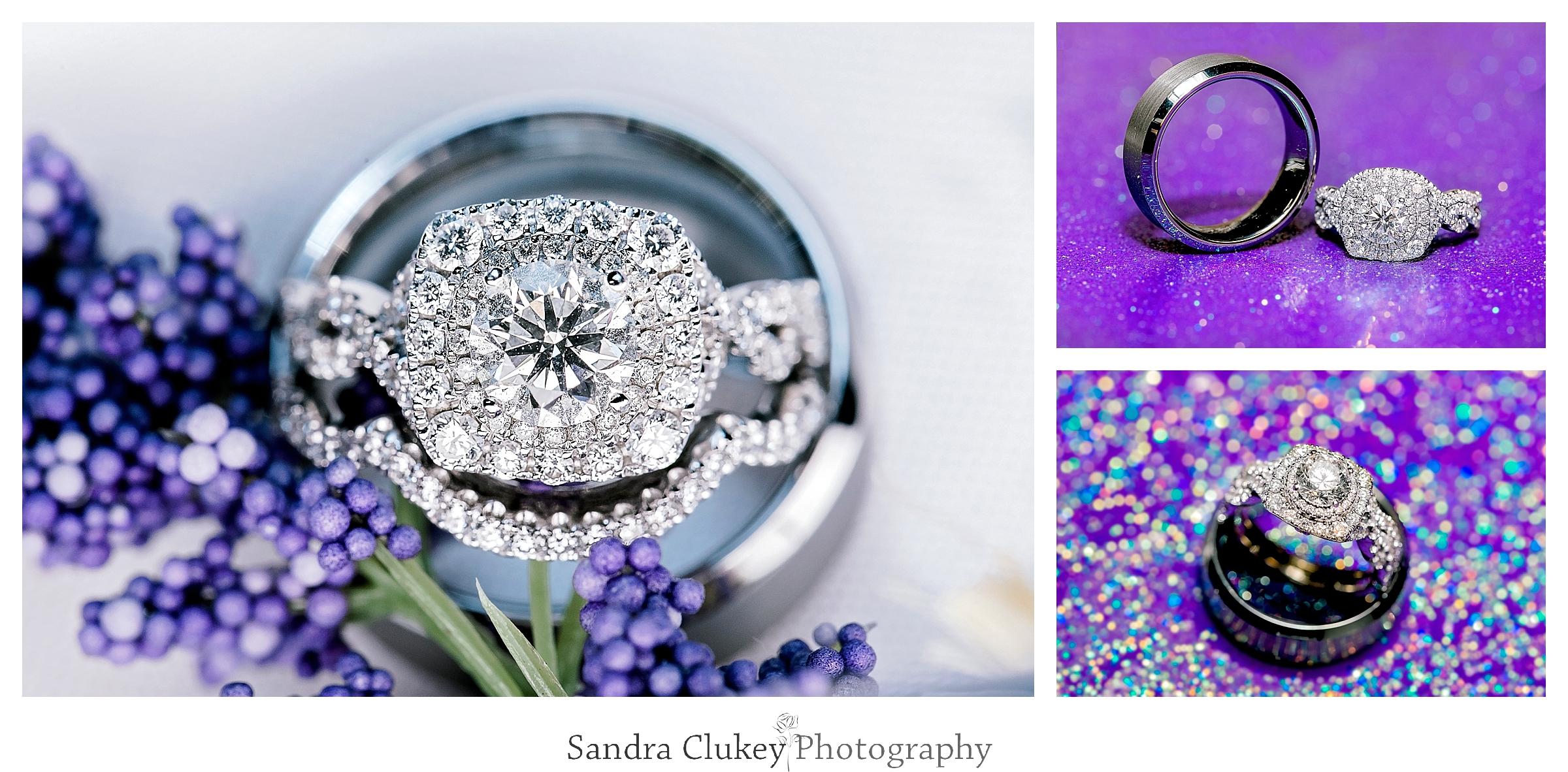 Sandra Clukey Photography_1432.jpg