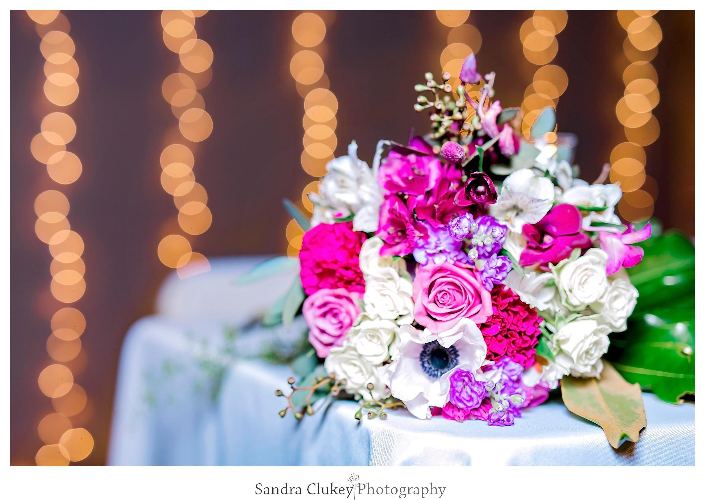 Sandra Clukey Photography_1436.jpg
