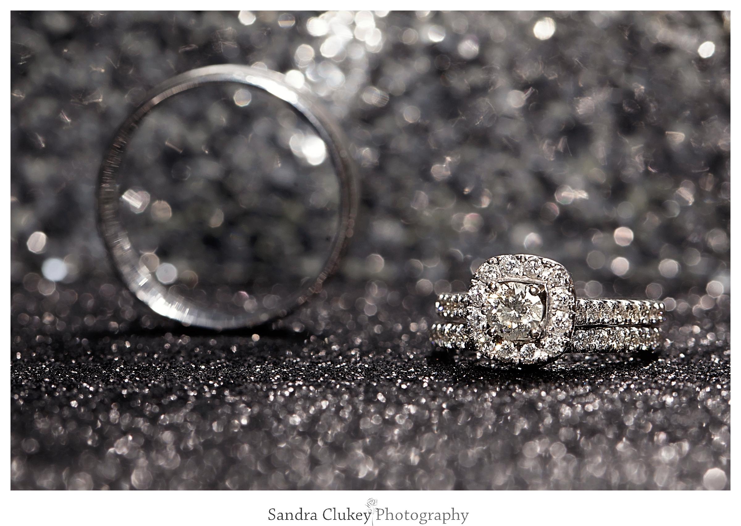 Sandra Clukey Photography_1597.jpg