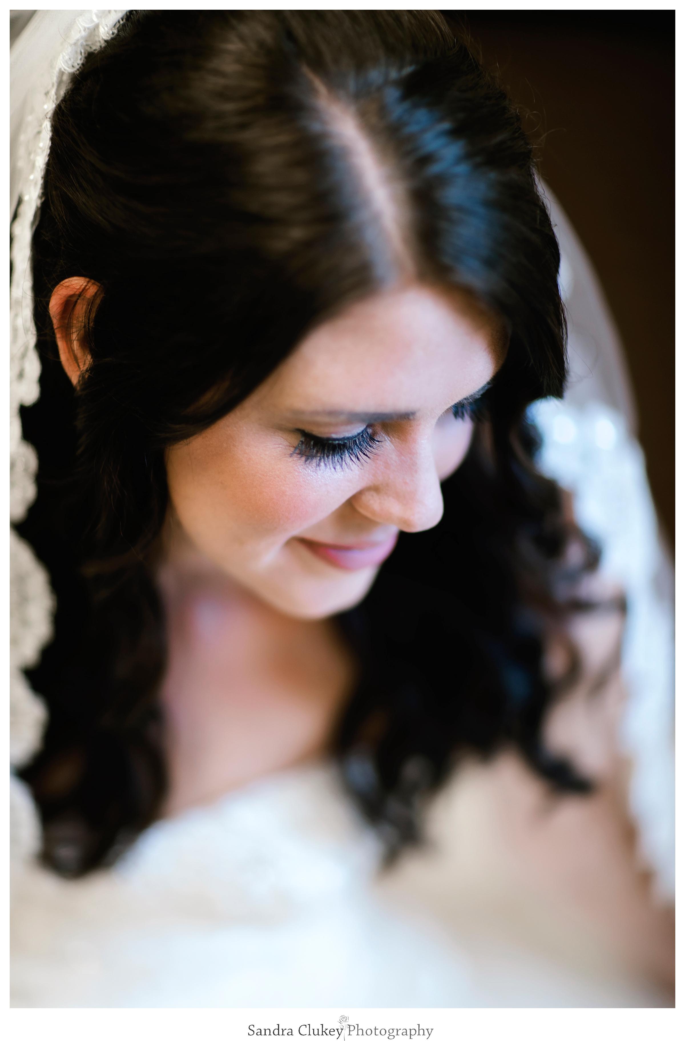 Sandra Clukey Photography_1742.jpg