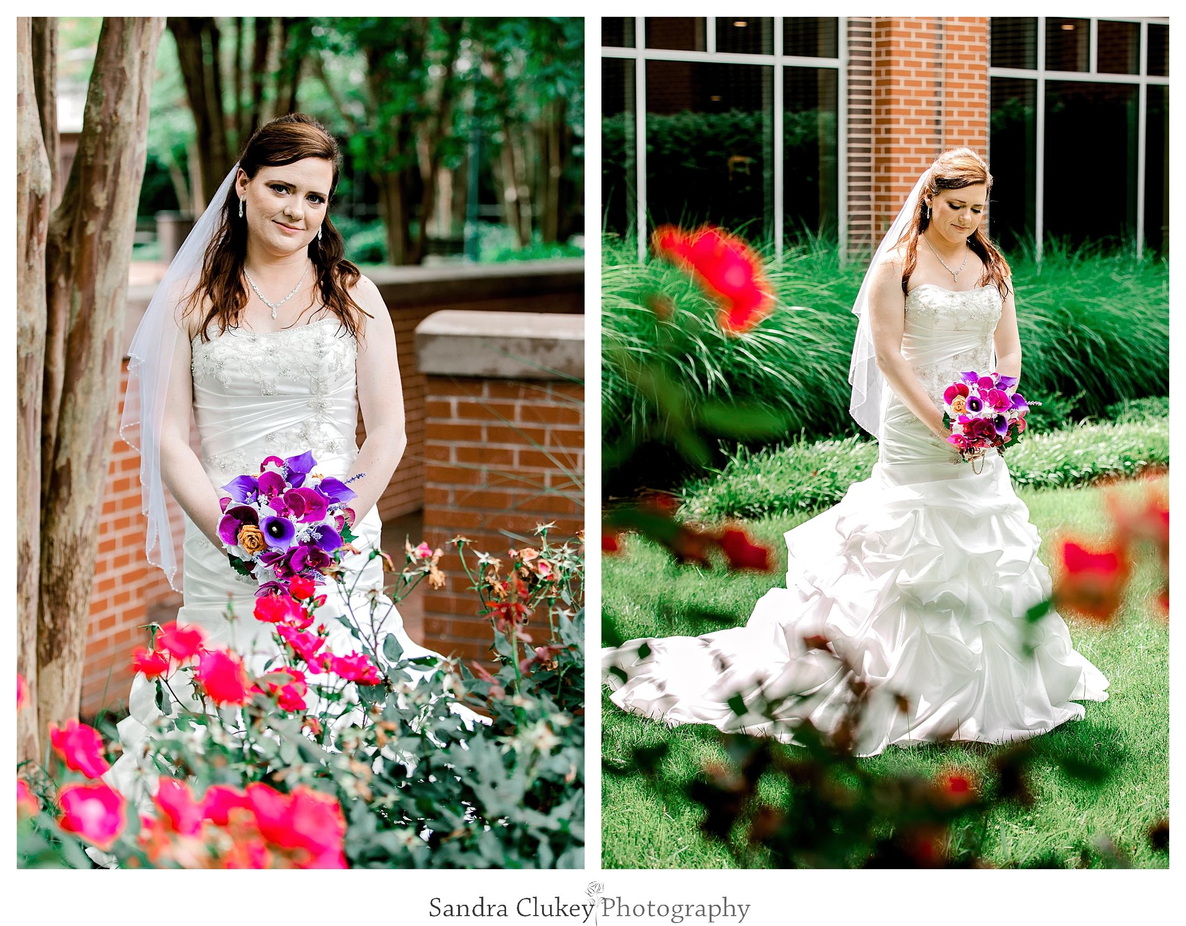 Sandra Clukey Photography_1884.jpg