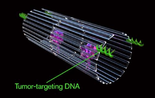 Image courtesy of ASU Biodesign Institute