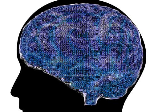 brain graphic.jpg