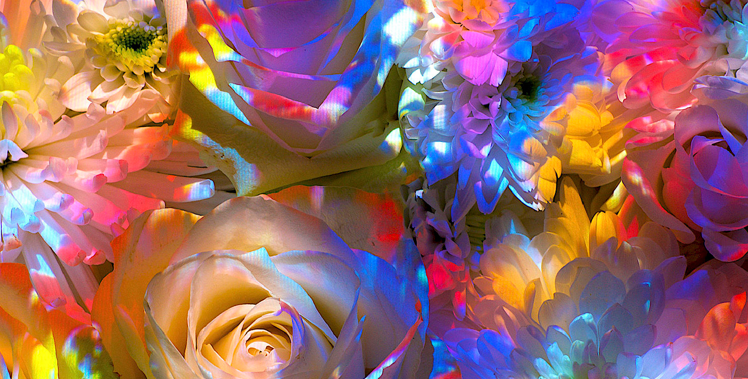 ELVIS-ELLIS-STILL-LIFE-FLOWER_PAINT-PROJECTION-02-01.jpg