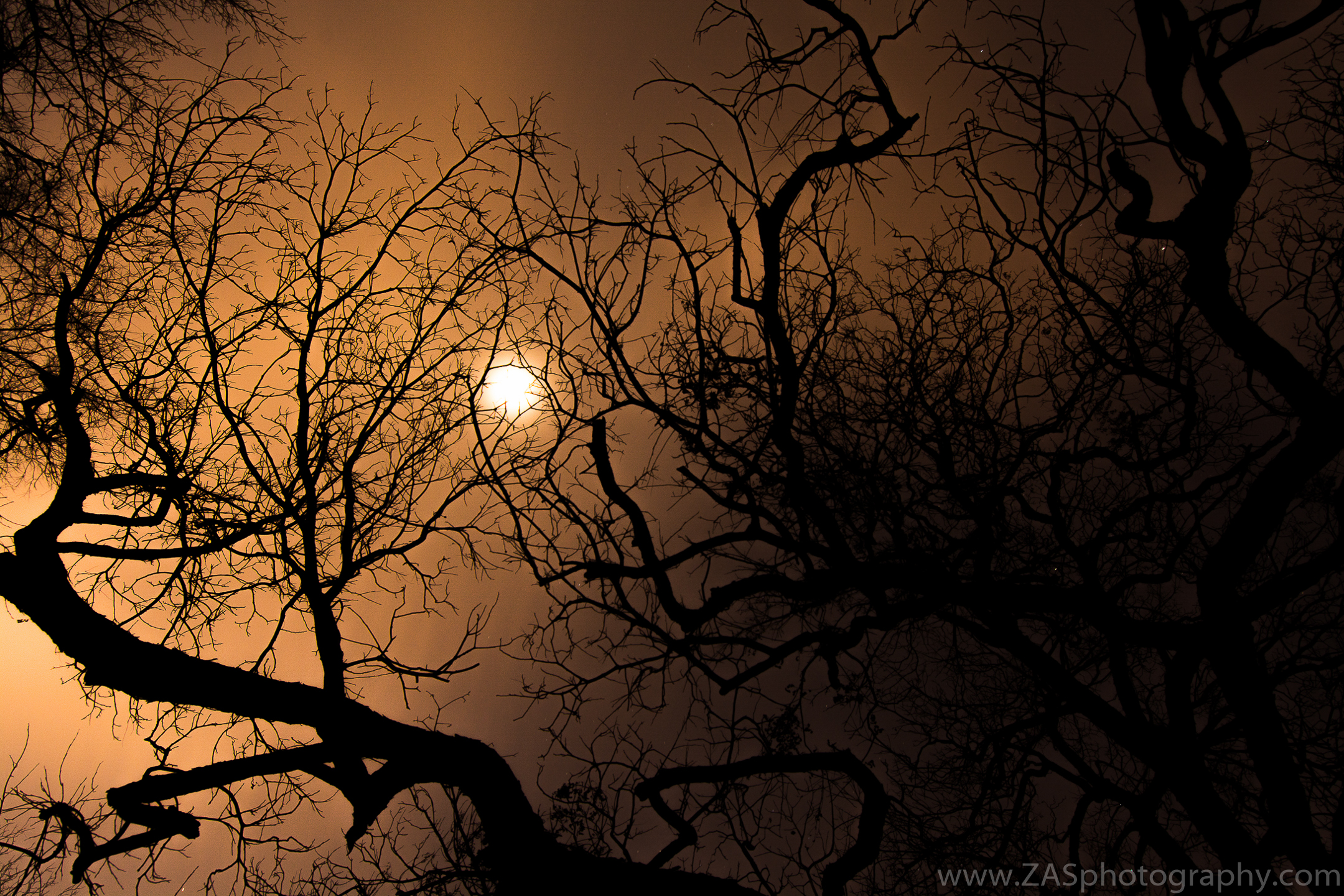 Bob Woodruff Park, Plano, TX. February sunset.