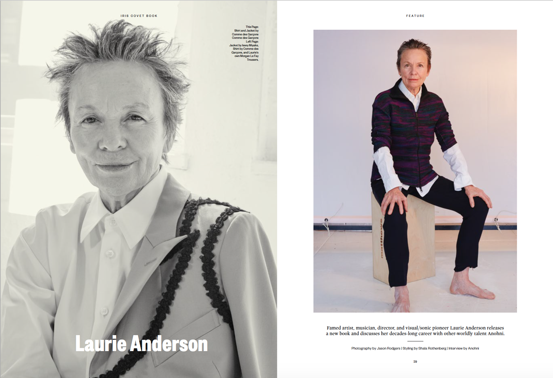 laurie_anderson_1.png