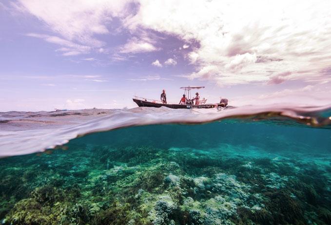 Roatan Marine Park Patrol.jpg
