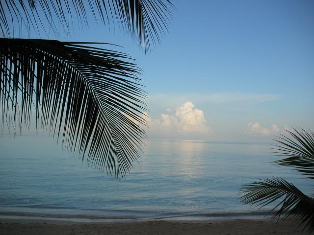 Remax Bay Islands