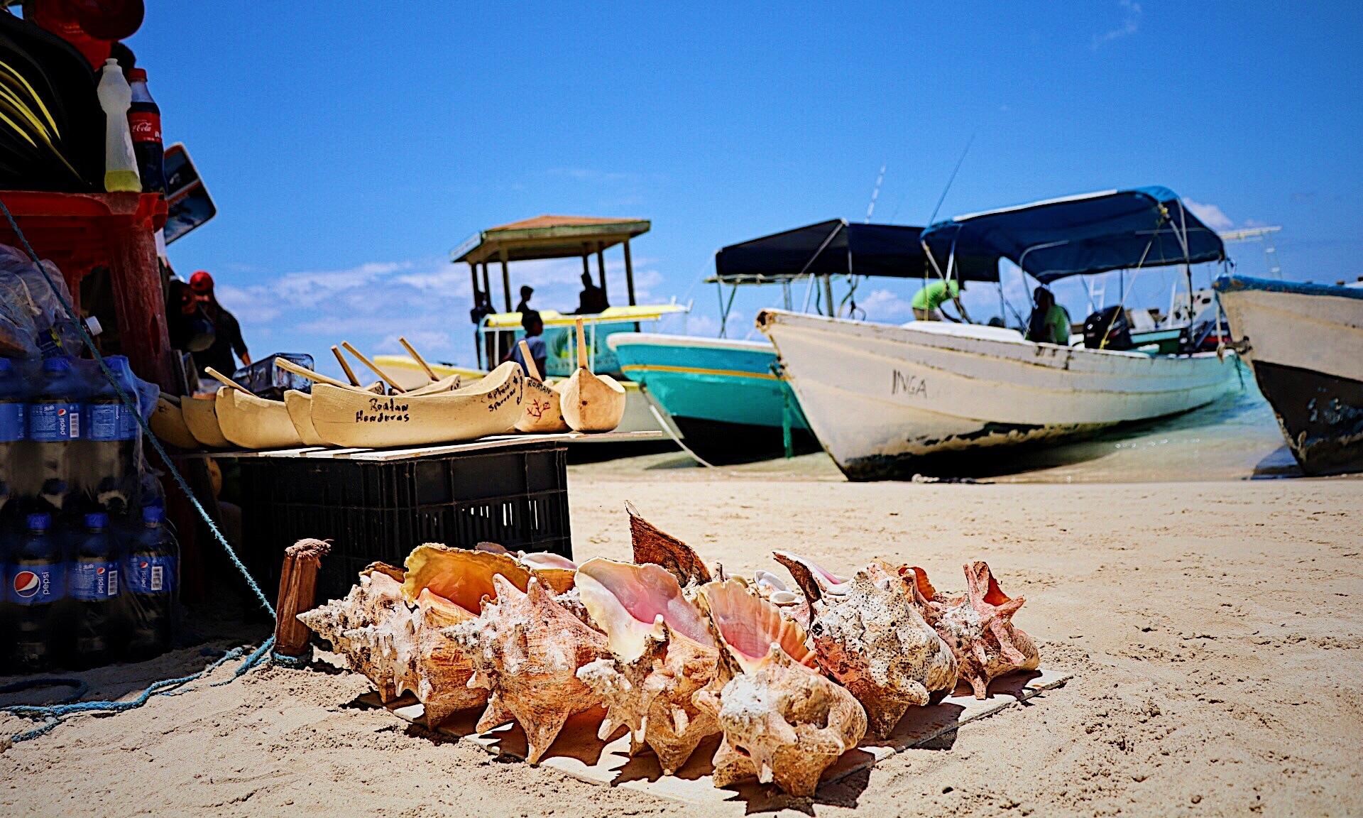 West Bay Beach Roatan