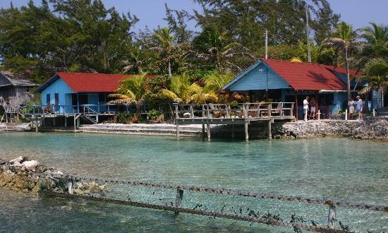 Living Waters Pool in Roatan Honduras