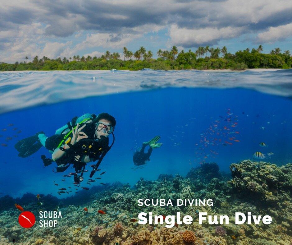 Single Tank Dive