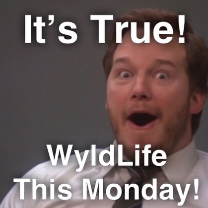 We have our next WyldLife club this coming Monday November 13th at 565 Coldstream Ct! Be there from 7-8:30pm!