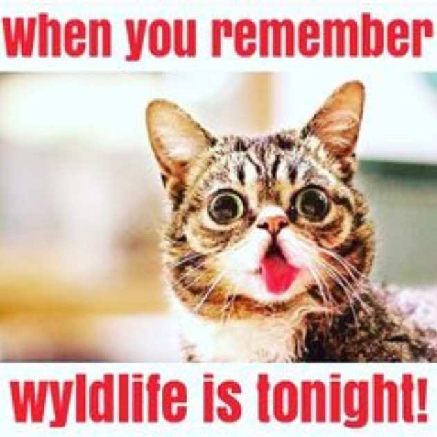 We've got another rocking WyldLife club tonight 7:00-8:30! Here's the address 830 Overhill Court Nw! We hope to see you there!