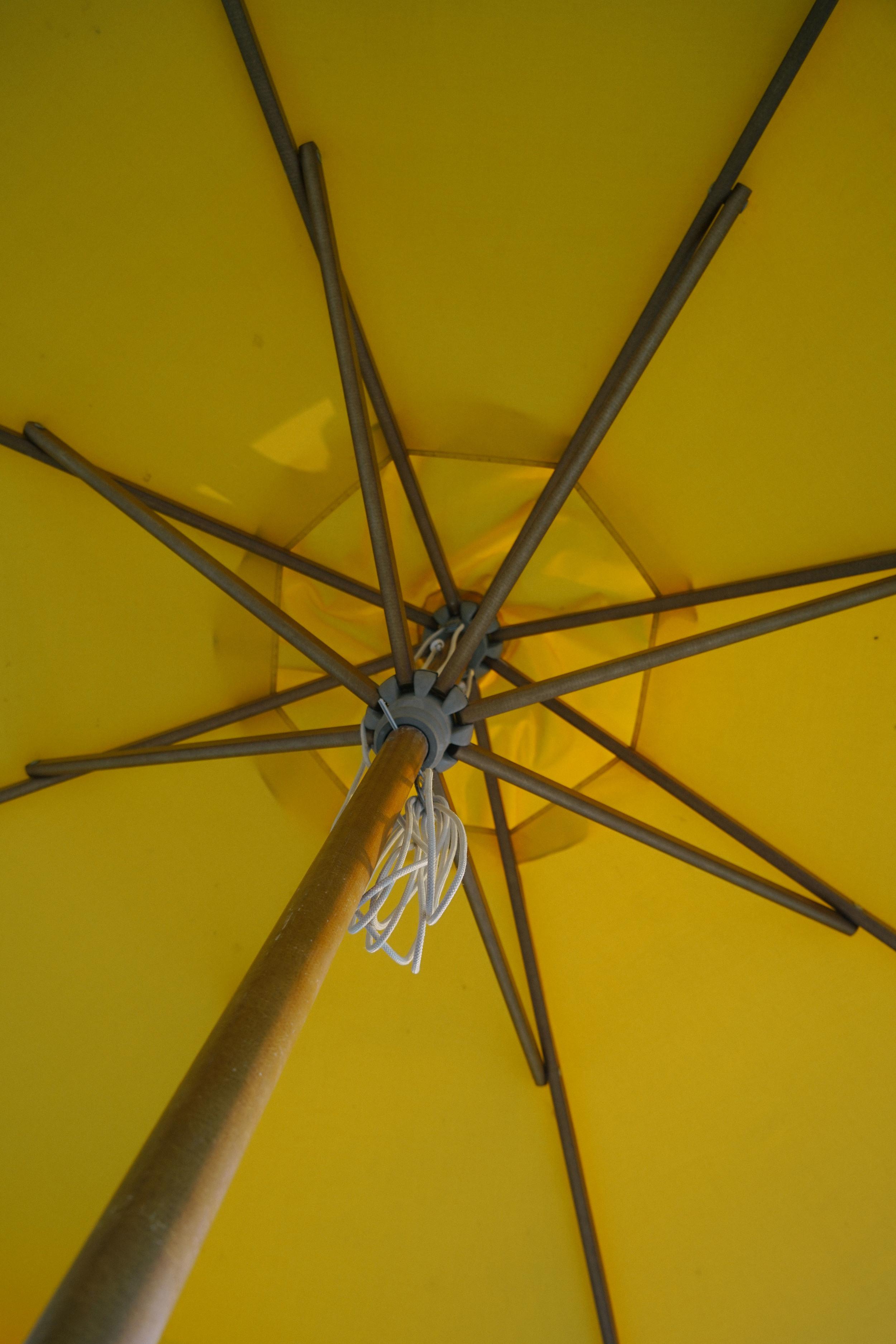 PHL-2_Umbrella.jpg