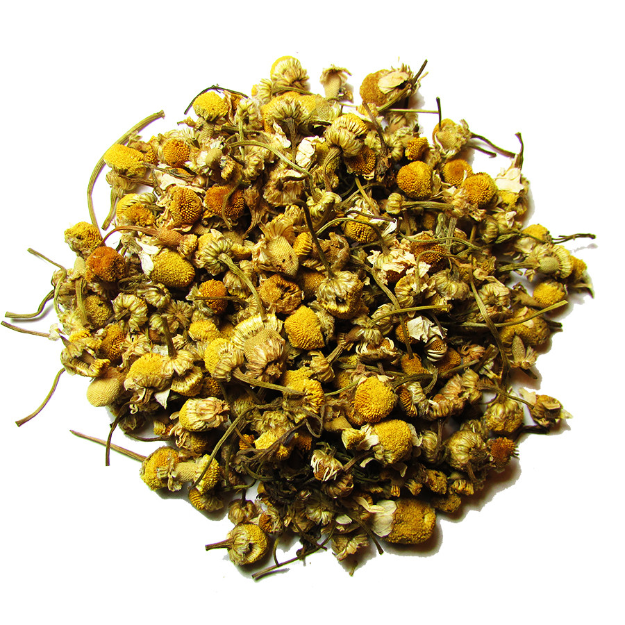 Egyptian_Chamomile