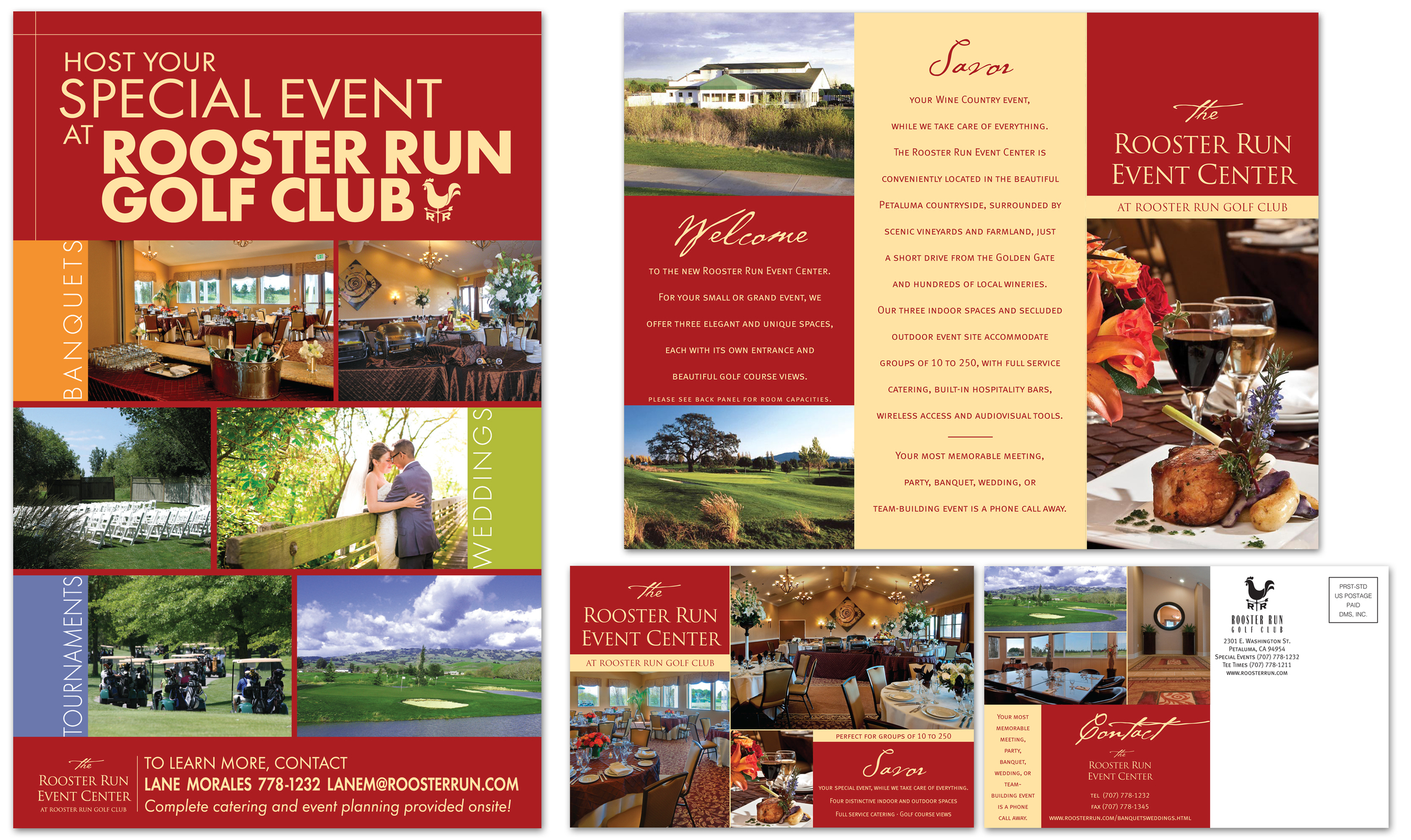 Poster, Brochure & Post Card | Writing & Design