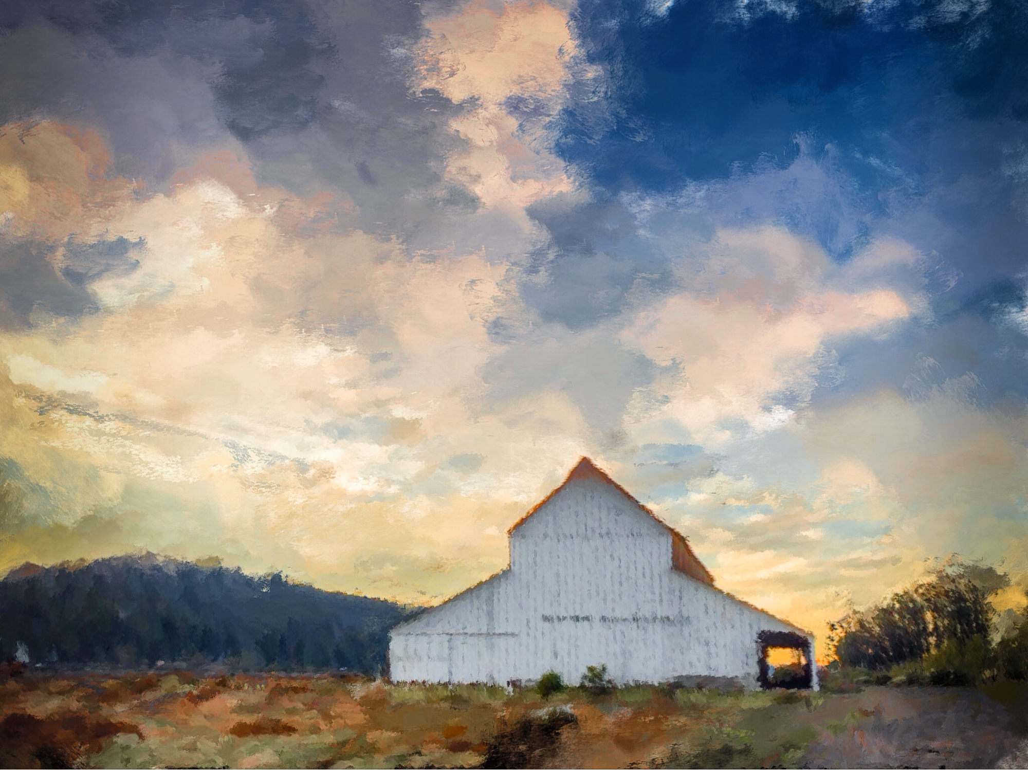 elizabeth-fenwick-photography-painterly-inverness-ca-barn-point-reyes-.jpg