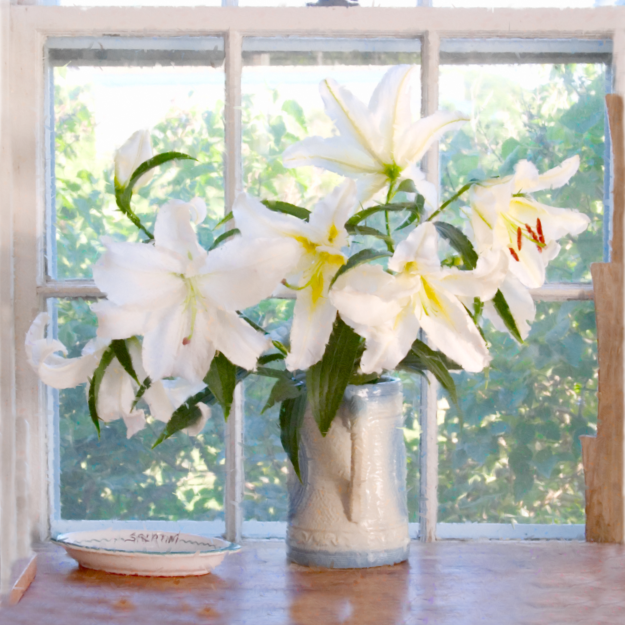 elizabeth-fenwick-photography-painterly-lilly-nantucket-flowers-.jpg