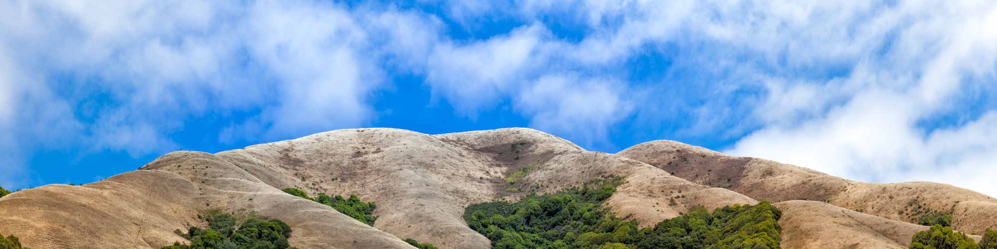 elizabeth-fenwick-photography-painterly-point-reyes-black-mountain-ranch-inverness-ca--sky-lines-.jpg