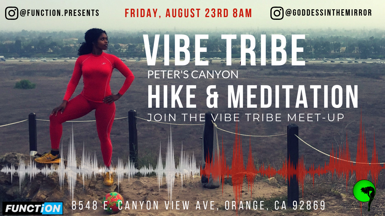 VIBE TRIBE FLIERS (4).png