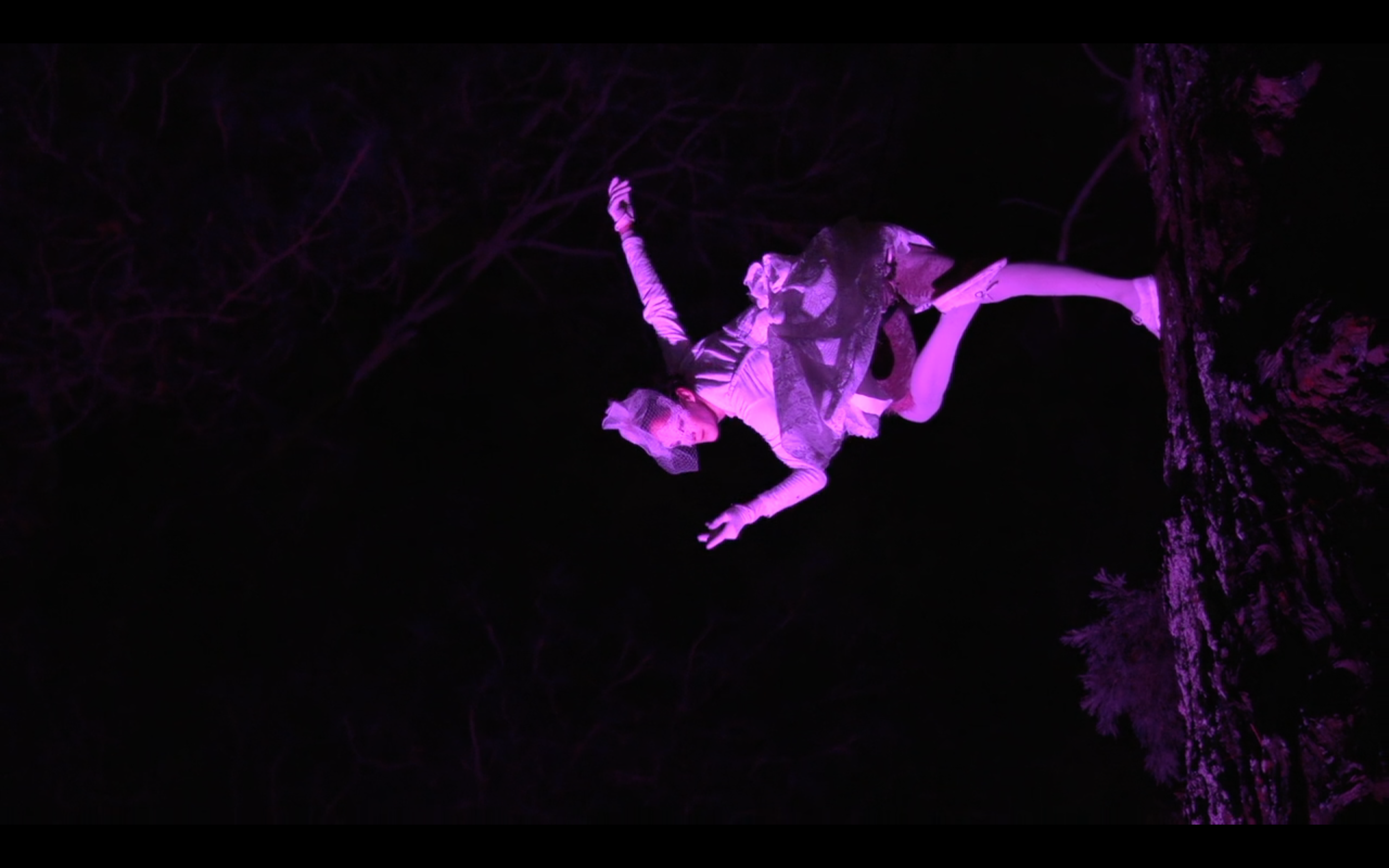 Arboreal Aerialist 1 (Chloe Loftus).png