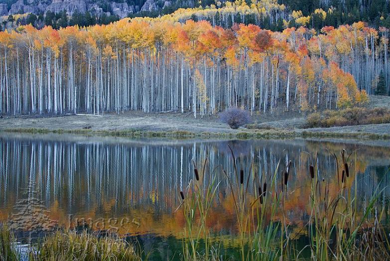 Landscape_Lake_Clear_Cimarron_CO_08.jpg