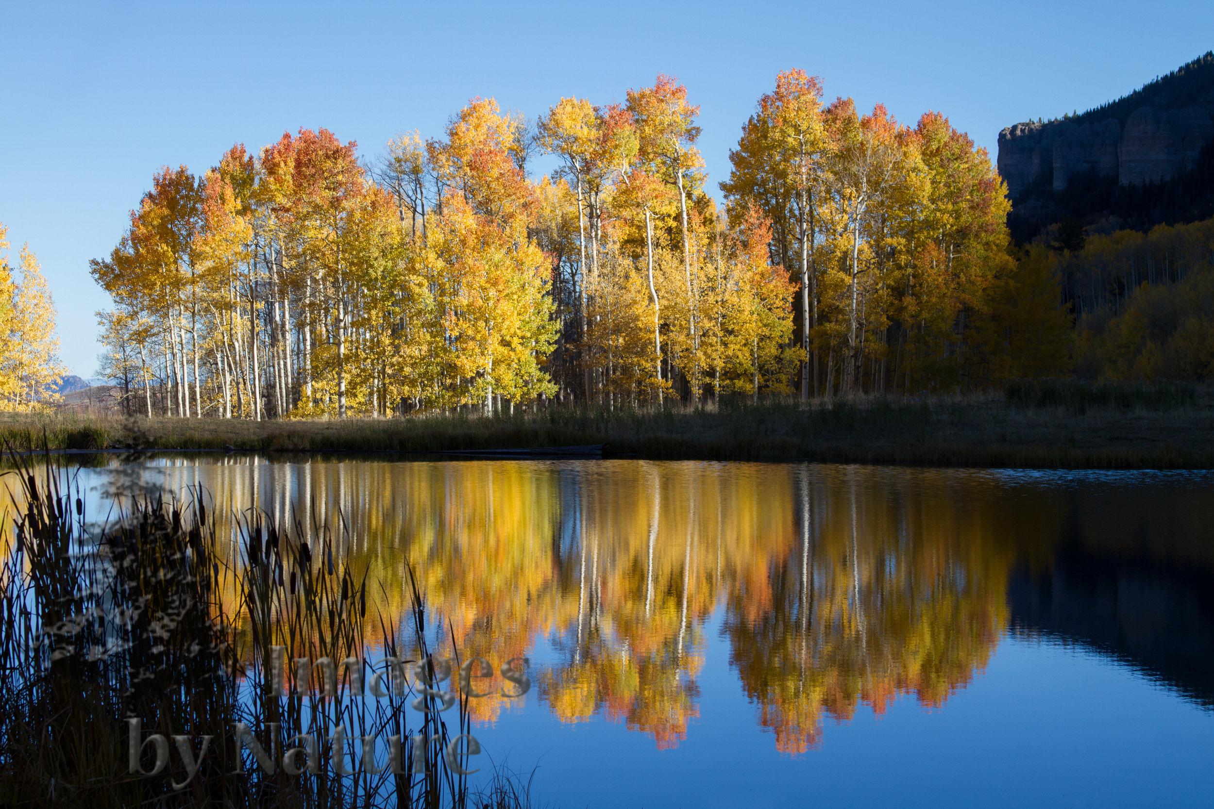 Landscape_Lake_Clear_Cimarron_CO_048_WEB.JPG