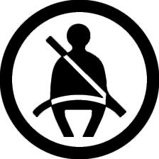 3 Point Belt