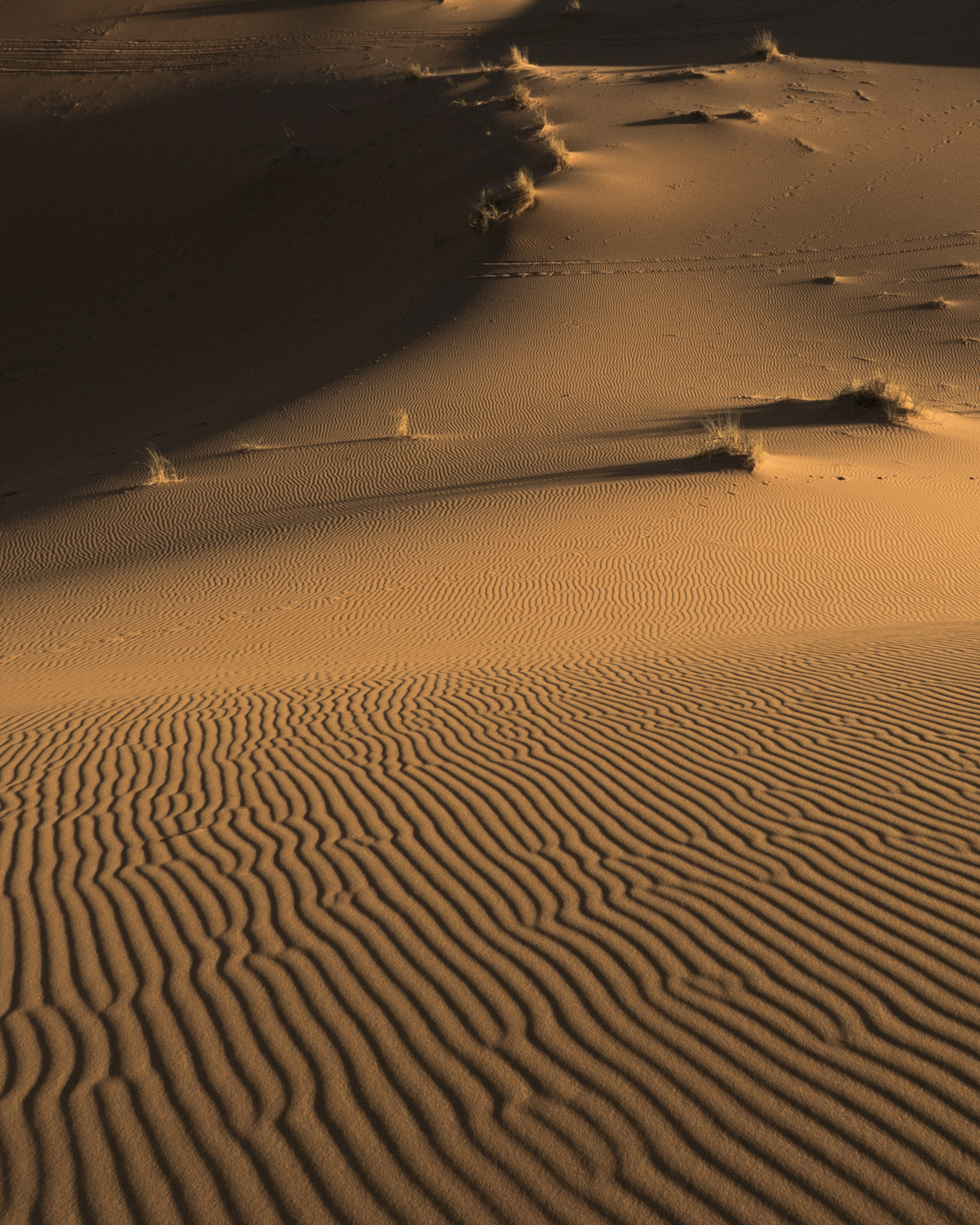 SandWaves02.jpg