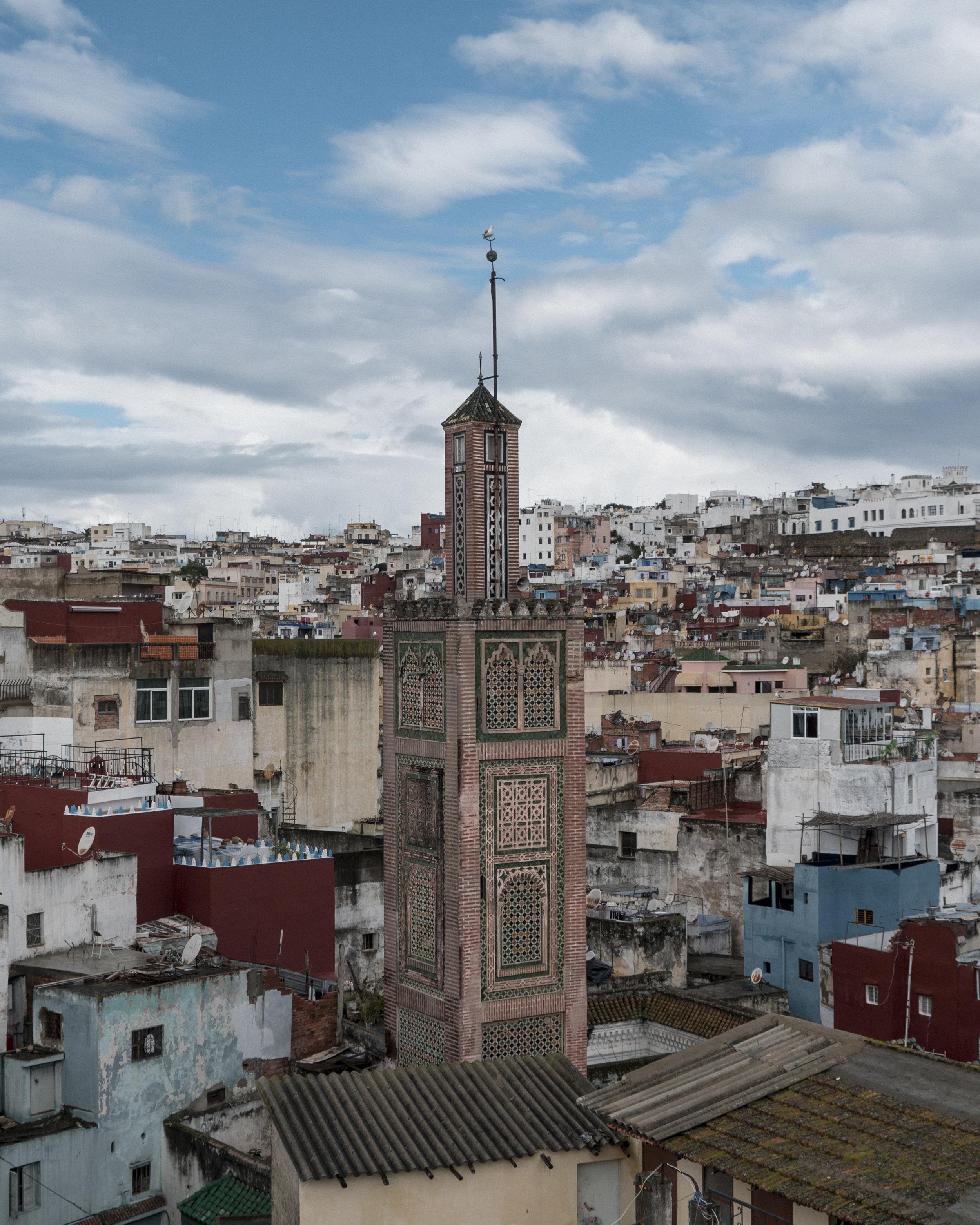 MosqueBird.jpg